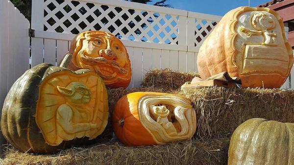 На ярмарке. Работы Фермера Майка. Фото с сайта cdn.abclocal.go.com