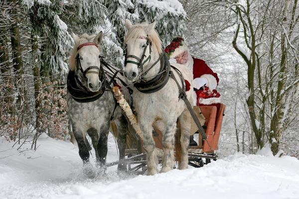 Пока Дед мороз добирался в Козляндию через заснеженный лес, злодеи стащили волшебный посох...