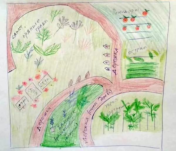 Эскиз конкурсного проекта Наш огород мечты. Автор - Давид Чигиз. Фото с сайта flowershowmoscow.ru