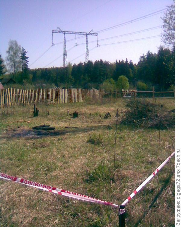 Очищенный от поросли участок земли.