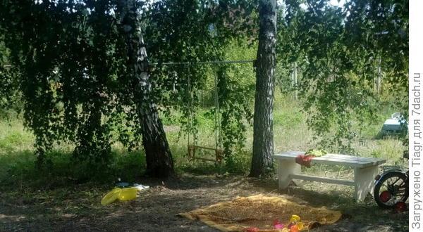 Мы оставили берёзы и повесили качели. Пусть пока будет так))) Это июль.