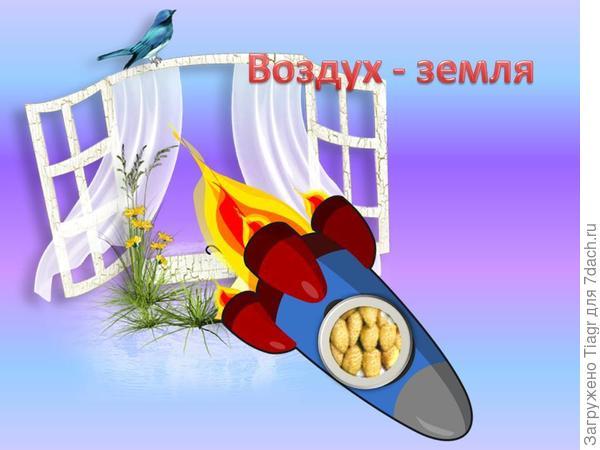 "Схема от Александра))) На борту ракеты земляника ""Жёлтое чудо"")))"