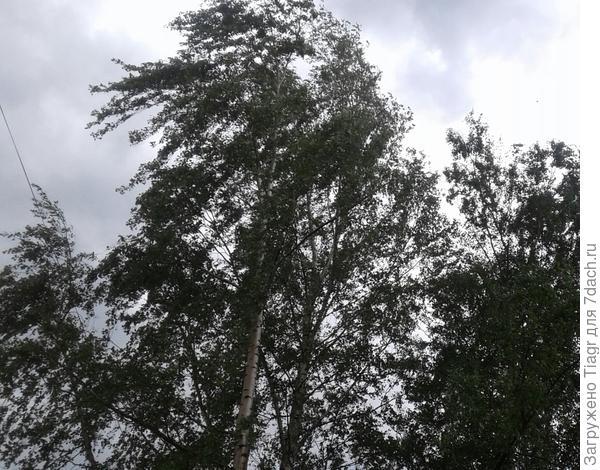 Я думала, что улечу вместе с облаками))))