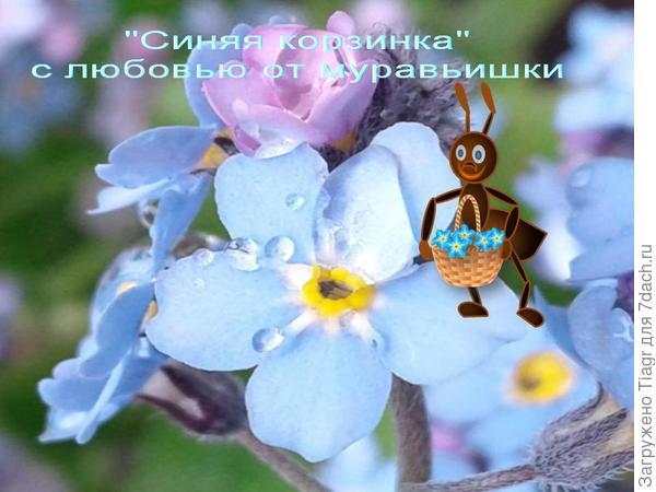 Это вам)))