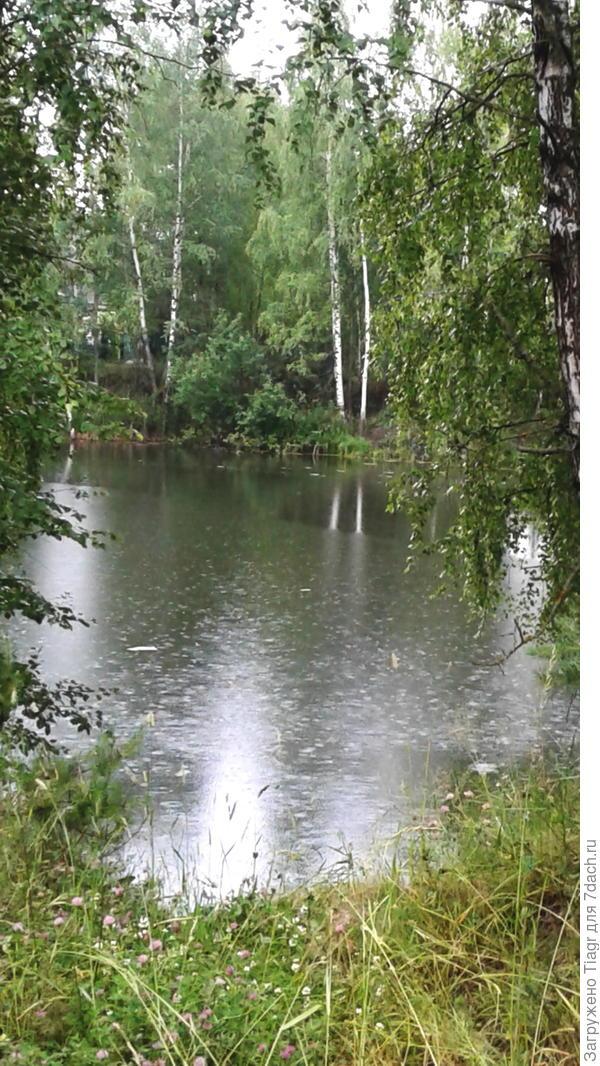 Июльский, тёплый дождик)))