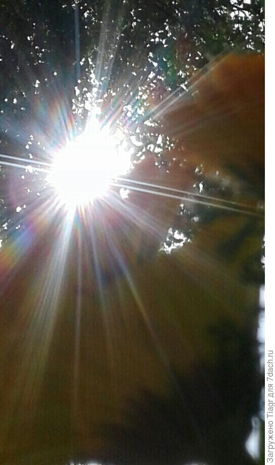 Всем солнца в доме и любви!