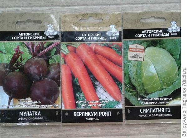 морковка и свёкла для борща