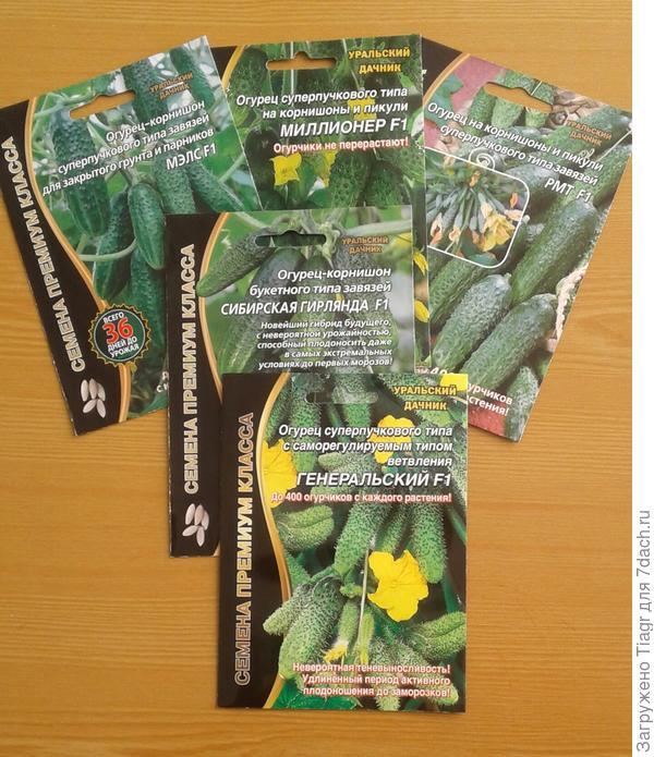 Пять красочных пакетов с семенами огурцов