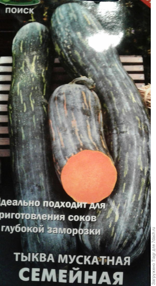 """Семена тыквы от агрофирмы """"Поиск"""""""