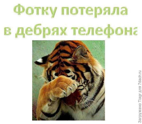 Девочки удалили из отчёта это при модерировании))))