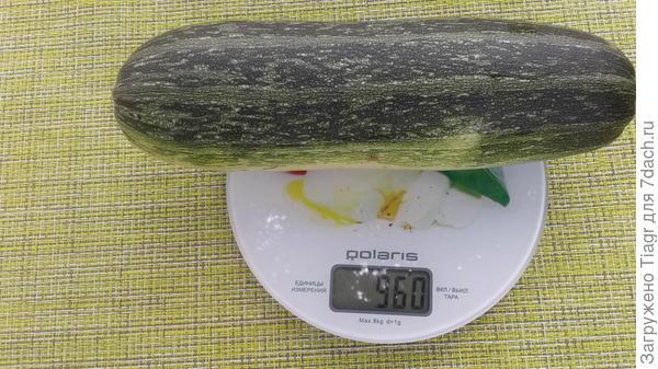 Вес плода 960 г