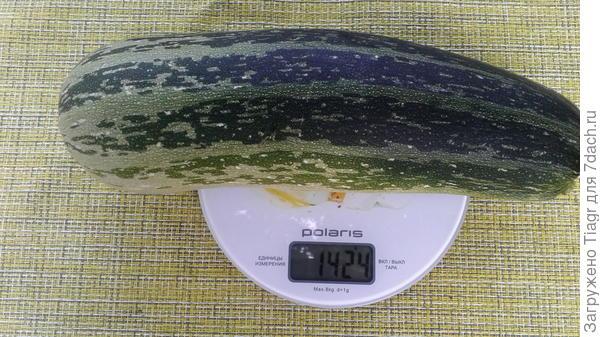 Вес плода 1424