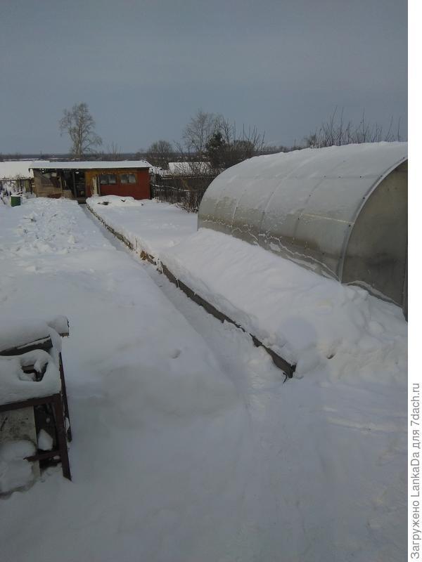 А это наш участок этой зимой.