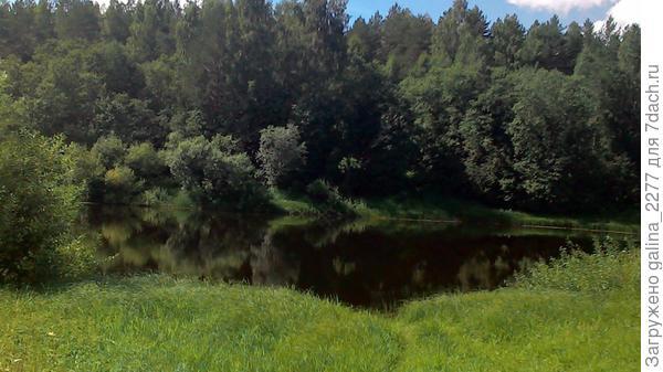 Наше поле в Тарасовской