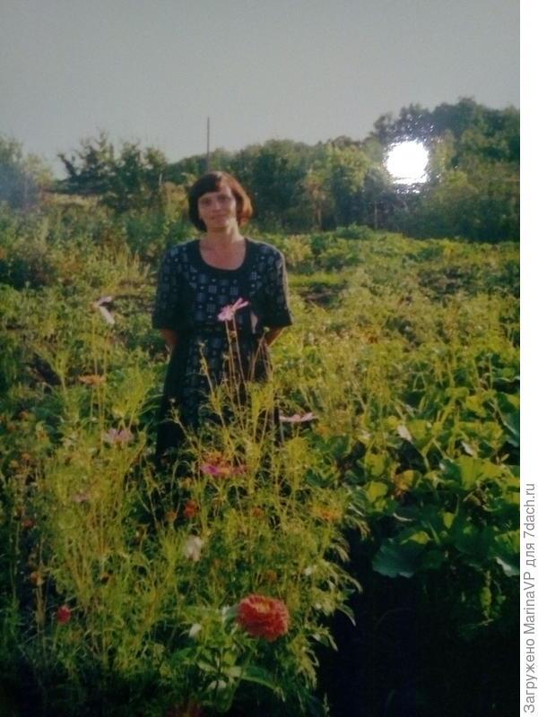 Фото сделано как раз в 90-е годы на первом дачном участке.
