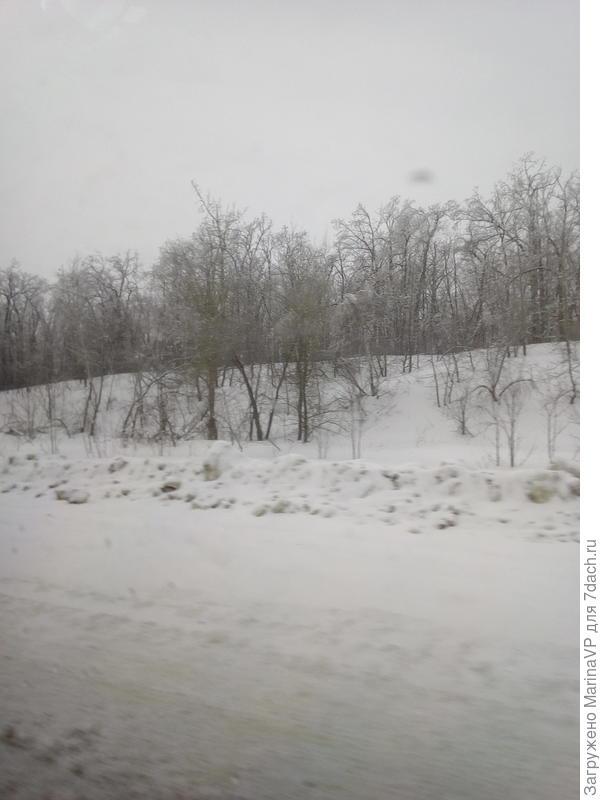 Снега много.Заснеженные деревья такие красивые.