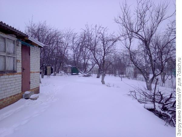 И на участке много снега, это хорошо!