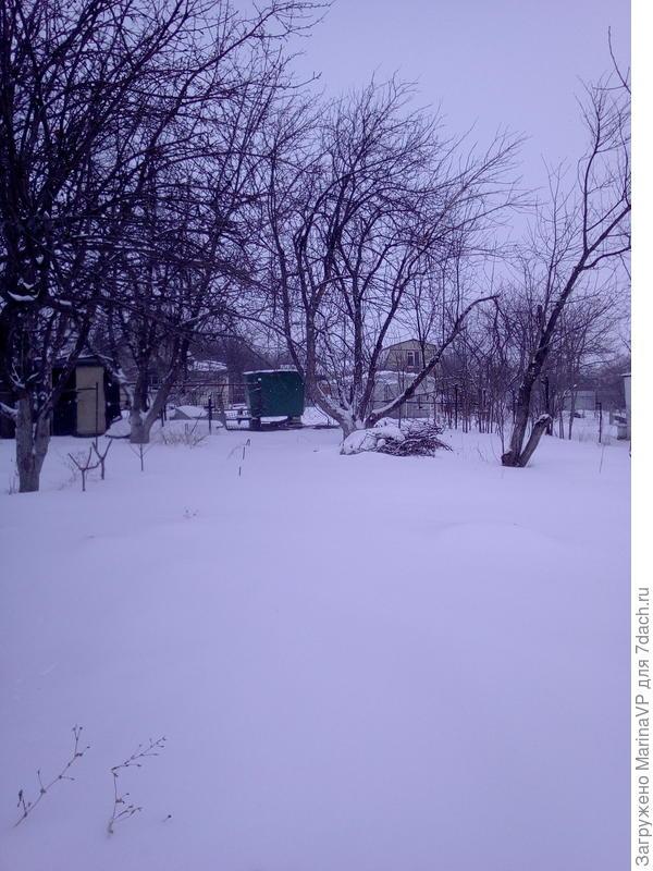 Снег,снег,снег!