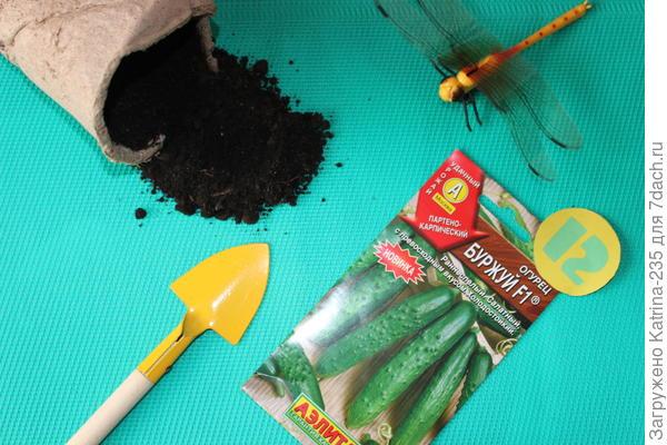 Цифры-количество семян в пакете