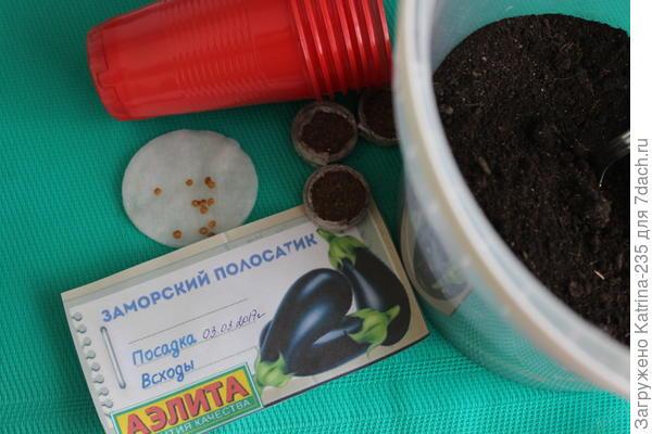 3 марта мной были посажены баклажаны в количестве 10 семечек, на 20 марта имеем следующую картинку↓