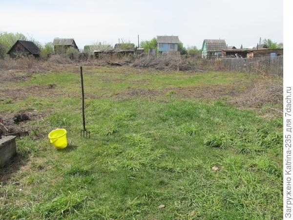 так участок выглядел осенью 2016,когда я скосила траву и как смогла избавилась от вишни,которая была куда не глянь) но это наверно 30% от всего ,что предстоит