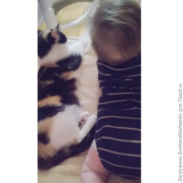всегда старается успокоить,когда плачет мелкий.сын с ней обожает играть:)