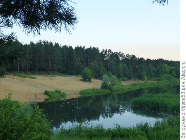 Гидра (озеро Солнечное)