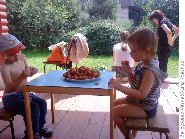 Внуки на веранде, июнь 2011г.