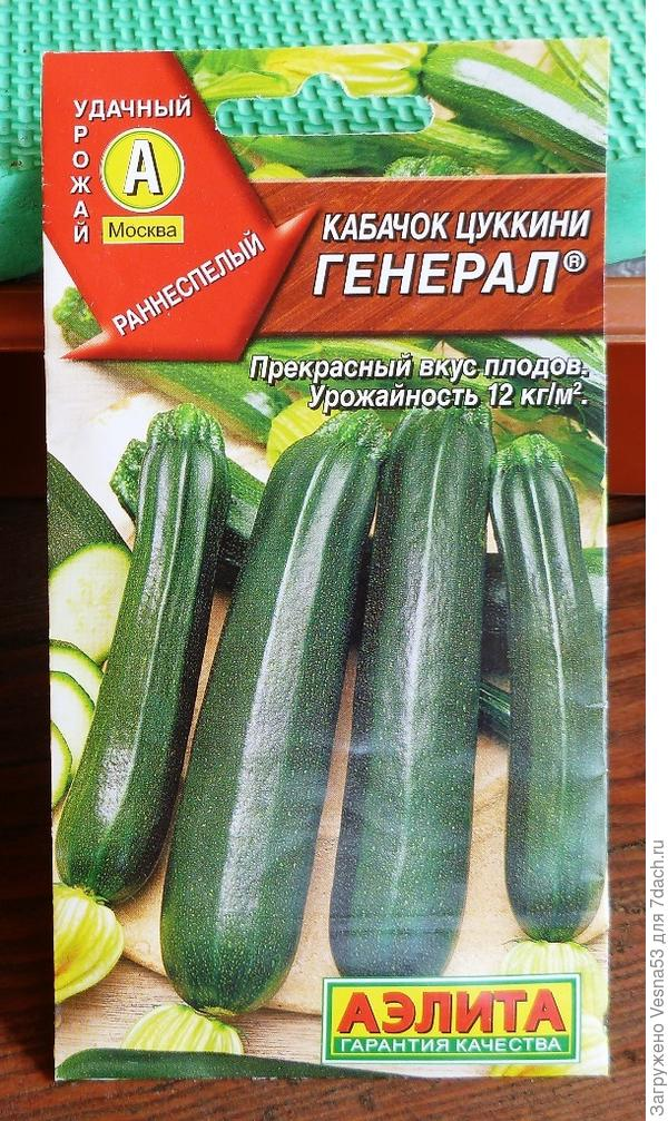 Пакет с семенами кабачок-цуккини Генерал