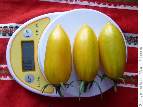 3 июля, томат Котя F1, первые спелые плоды.