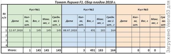 Таблица учета урожая томата Лирика F1, три куста, по состоянию на 12 июля.