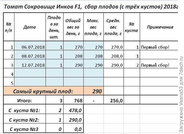 Учет урожая томата Сокровище Инков F1  по состоянию на 12 июля.