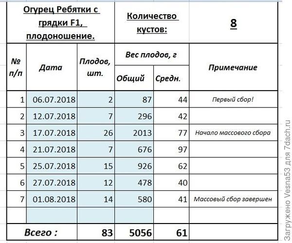 Учёт плодоношения огурца Ребятки с Грядки F1 по состоянию на 1 августа.