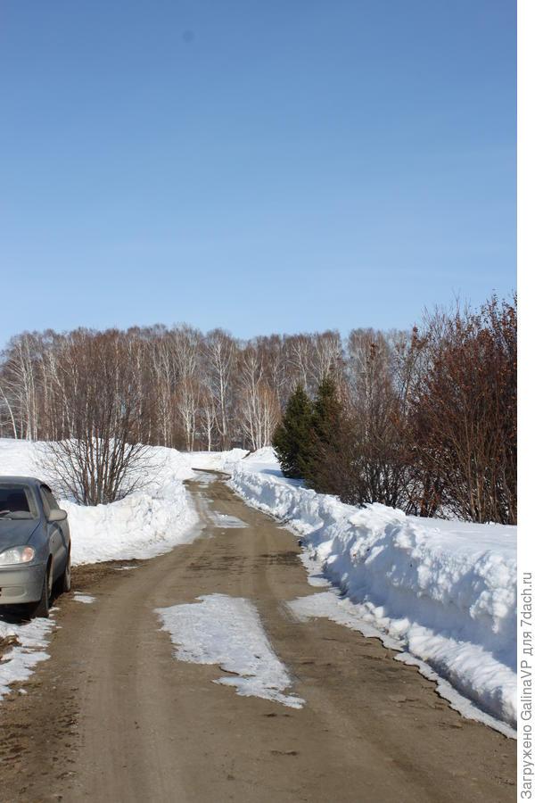 """Это та дорога,что идёт на озеро,по ней мы спокойно добрались до нашей аллеи, вдоль дороги расчищены небольшие """"кармашки"""" чтоб можно было поставить машину или развернуться"""