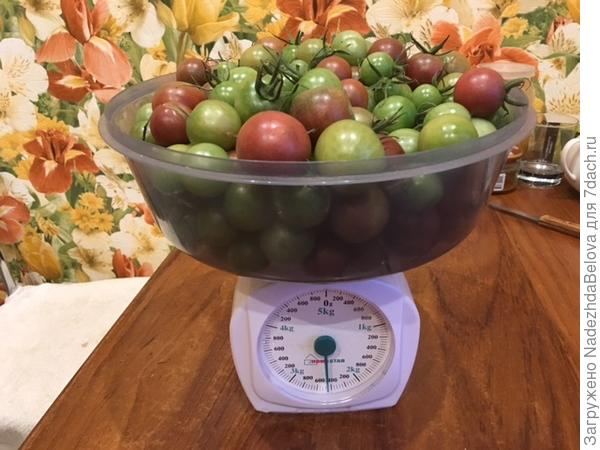 Томат Диковинка 1 вес
