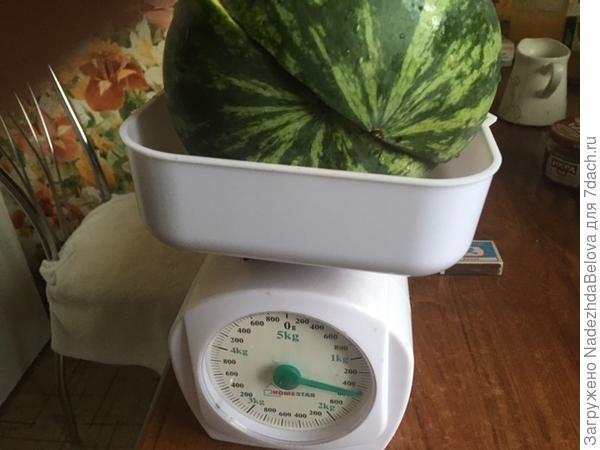 А это вес
