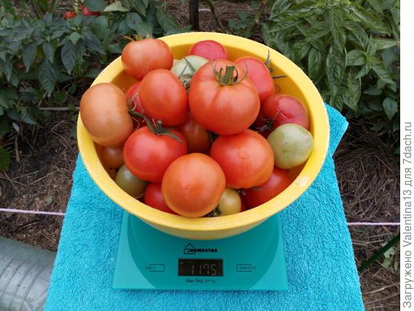 Вес второй тары с помидорами