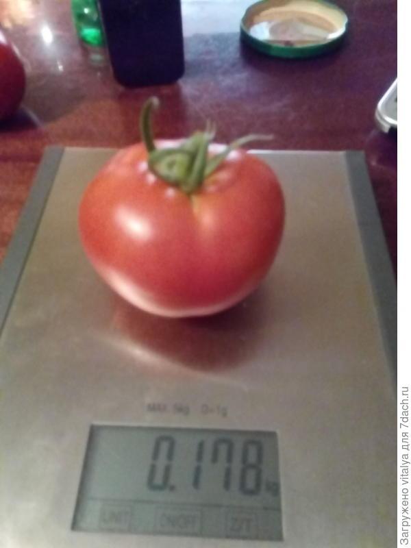 первая Любаша 178 грамм