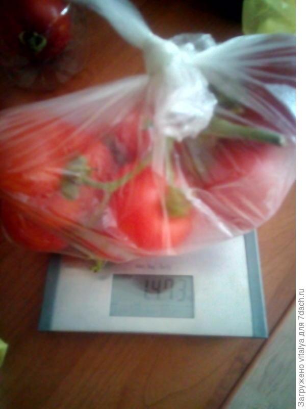 """томат с куста """"Л"""" в пакетике с грядки №1"""
