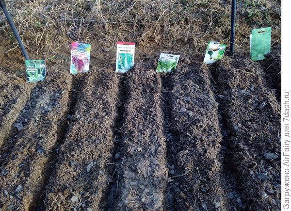 С открытием дачно-огородного сезона!
