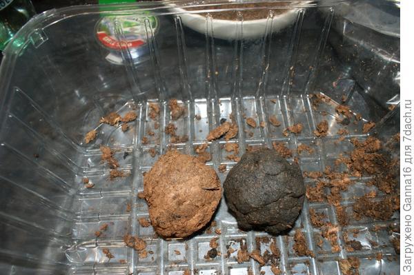 Слева: глина+торф, справа: кето.