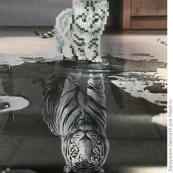 Такой вот котёнок- тигр