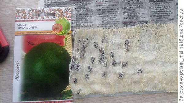 Просушивала кулёчек с семенами на газете