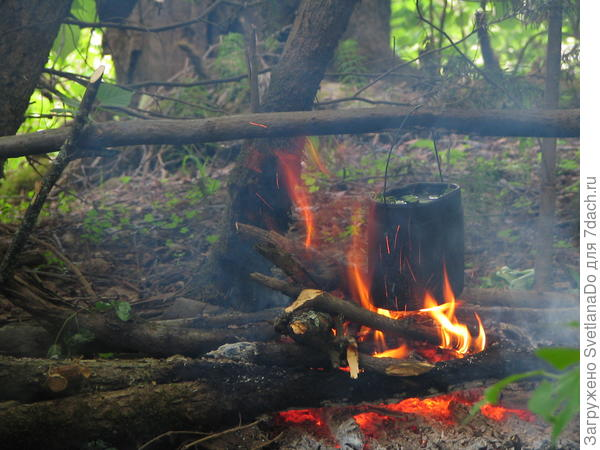 чай на костре в лесу