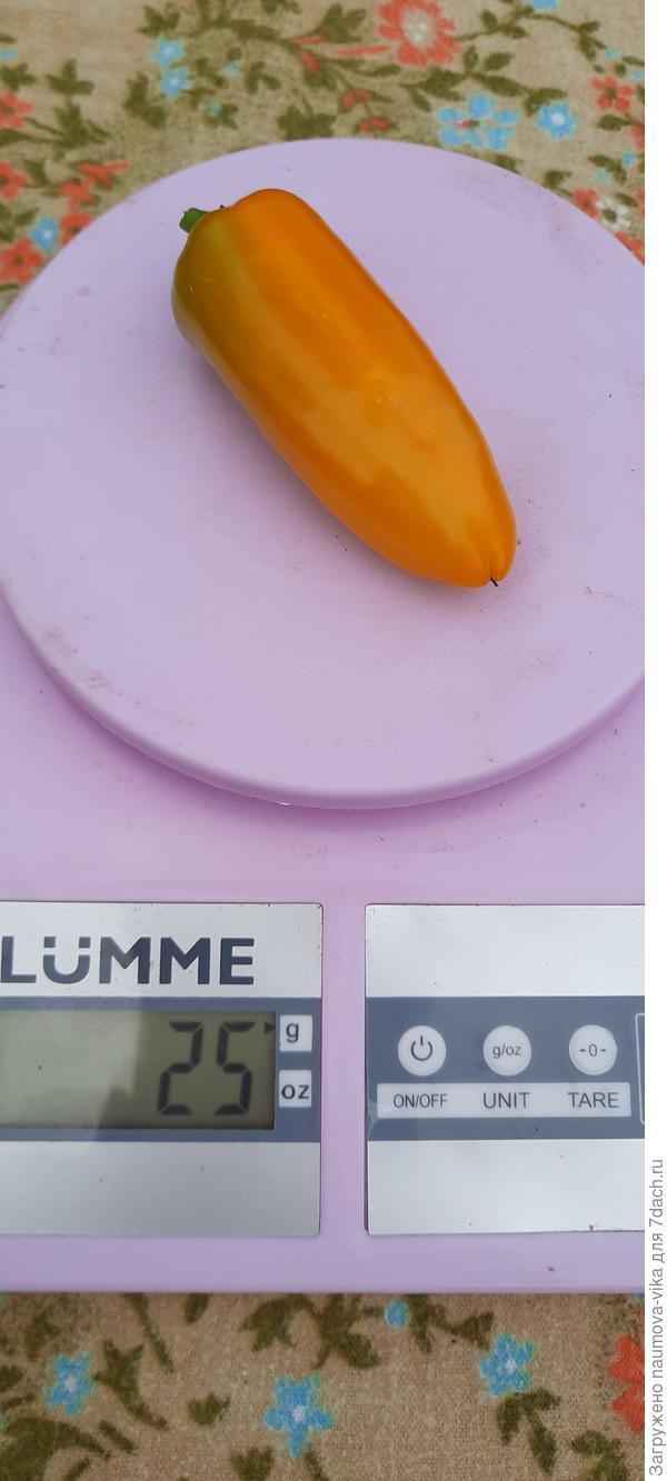 Перец сладкий 'Апельсин желтый' F1. Деткам - конфетки!