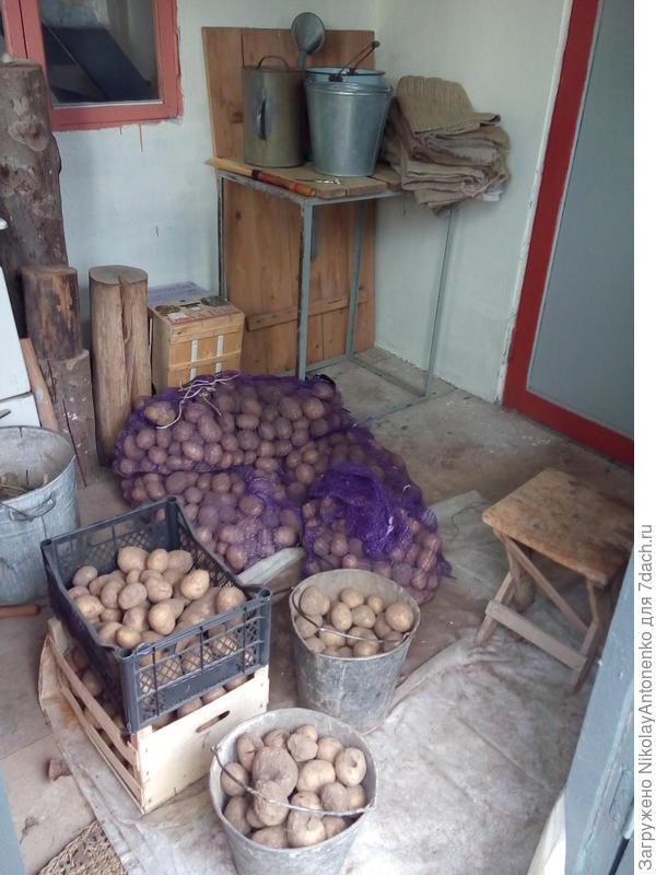 картошка от МИРАТОРГА