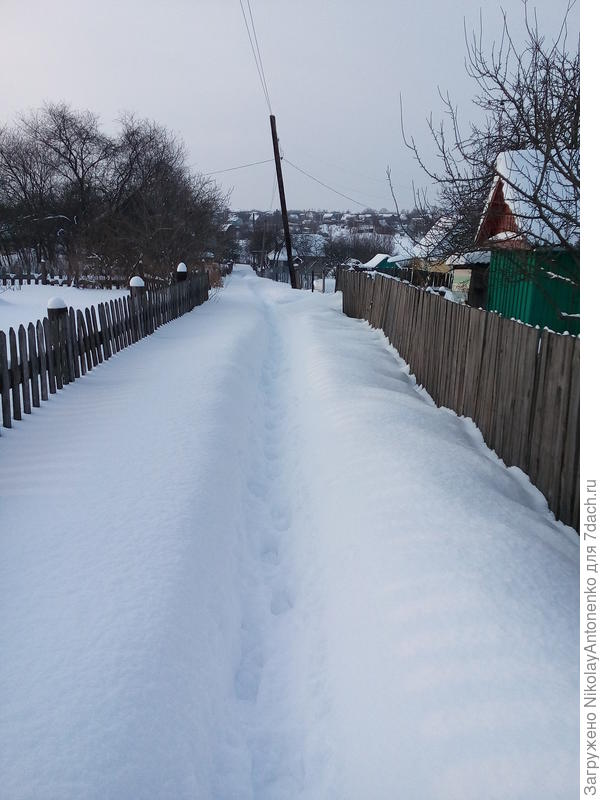 Тропинка под снегом