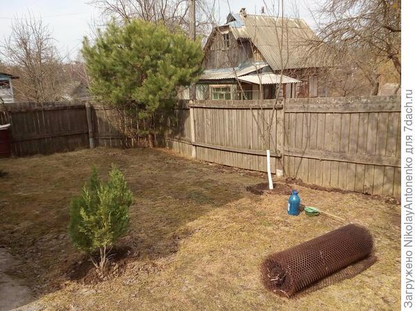 малая лужайка, деревянный забор, металлическая сетка