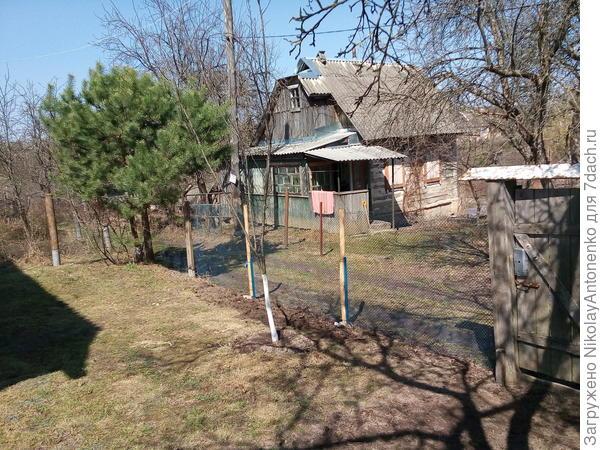 малая лужайка, забор из металлической сетки, вид на домик соседей