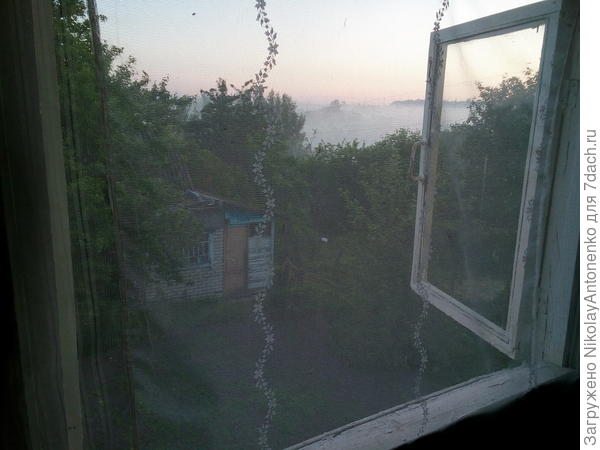 открытое окно, тюль от камаров